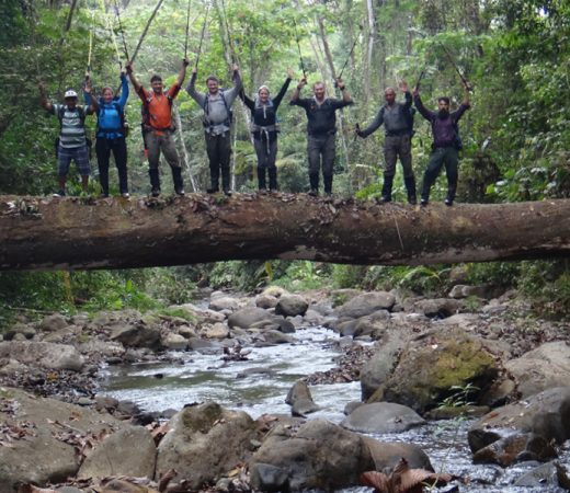 Trekking team stood on a log bridge from a fallen tree in the Darien Gap