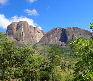 Madagascar Tsarasoa