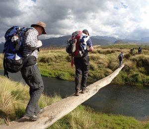 Basic bridge river crossing in Madagascar