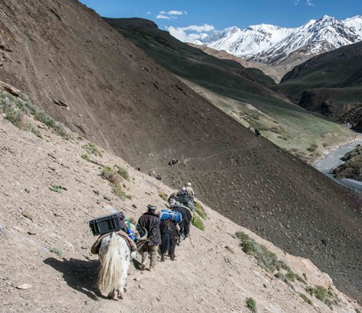 Travelling with yak herds in the Wakhan Corridor