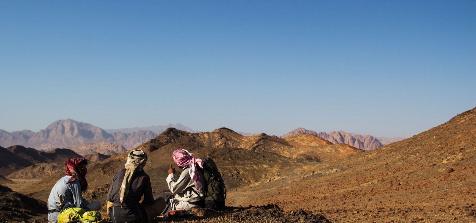 bedouin sinai desert