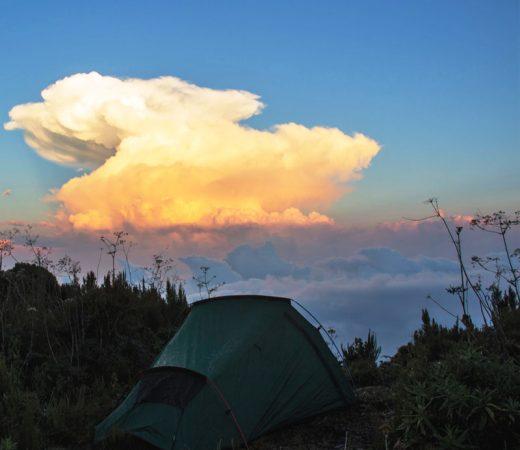 trekking-in-uganda
