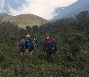 DRC Virunga Trek