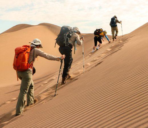 desert-expedition