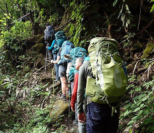 team jungle trek