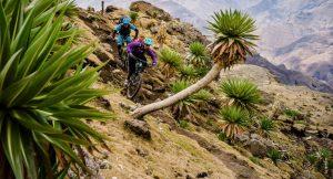 Ethiopia image (c) Dan Milner
