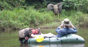 Gabon, Ivindo river