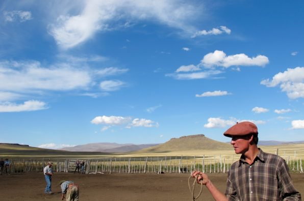 Rounding up horses with gauchos in Argentina