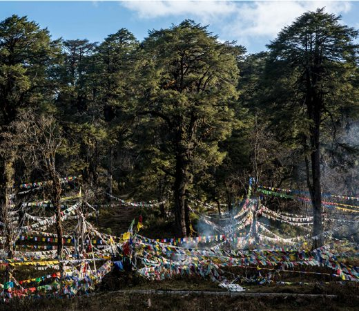 Bhutan expedition