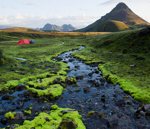 Iceland trekking on the Laugavegur Trail