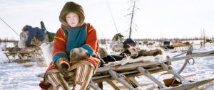 Nenets boy on sledge on reindeer migration, Siberia