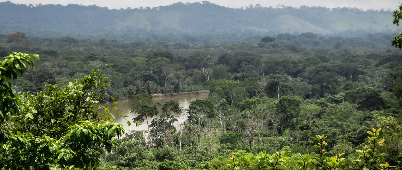 Panama's Darien Grid Wide image