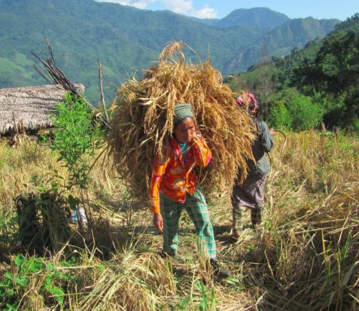 Burma Saramati Expedition man in field