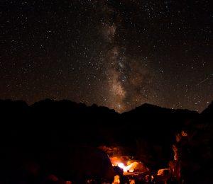 Campfire in the Sinai Desert