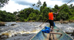 Local Gabon man on a wooden canoe tackling the rapids of the Djidji river, Gabon