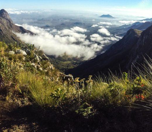 Malawi AMECA expedition to Mount Mulanje