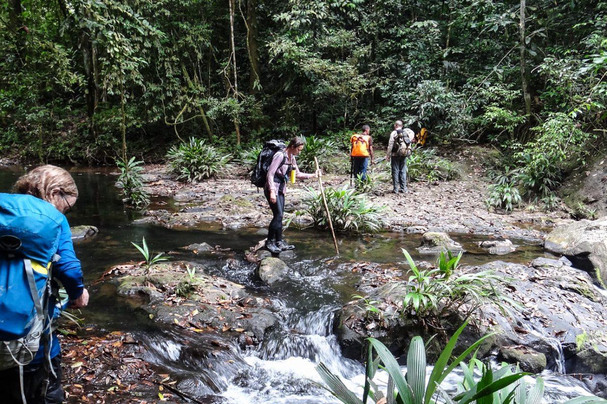 Panama, the exped begins. trekking through rivers
