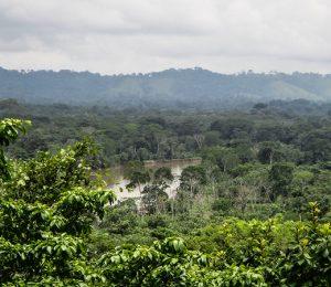 Swamps, The Darien gap
