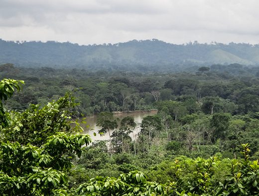 Swamps, The Darien gap