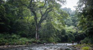 River Crossings in the Darien Gap, one reason your feet never dry
