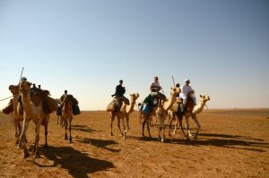 Secret Compass team members traverse Sudan's Bayuda desert