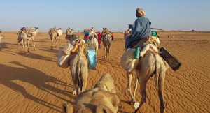 camel supported trekking across the Bayuda desert in Sudan