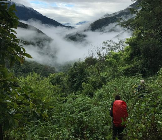 Jungle trekking Burma