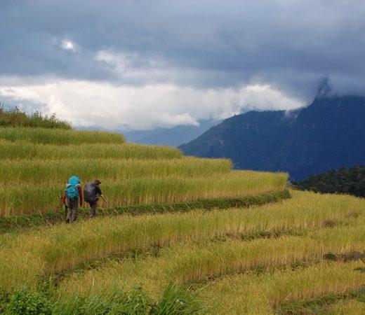 Trekking through farmland in Burma's Nagaland