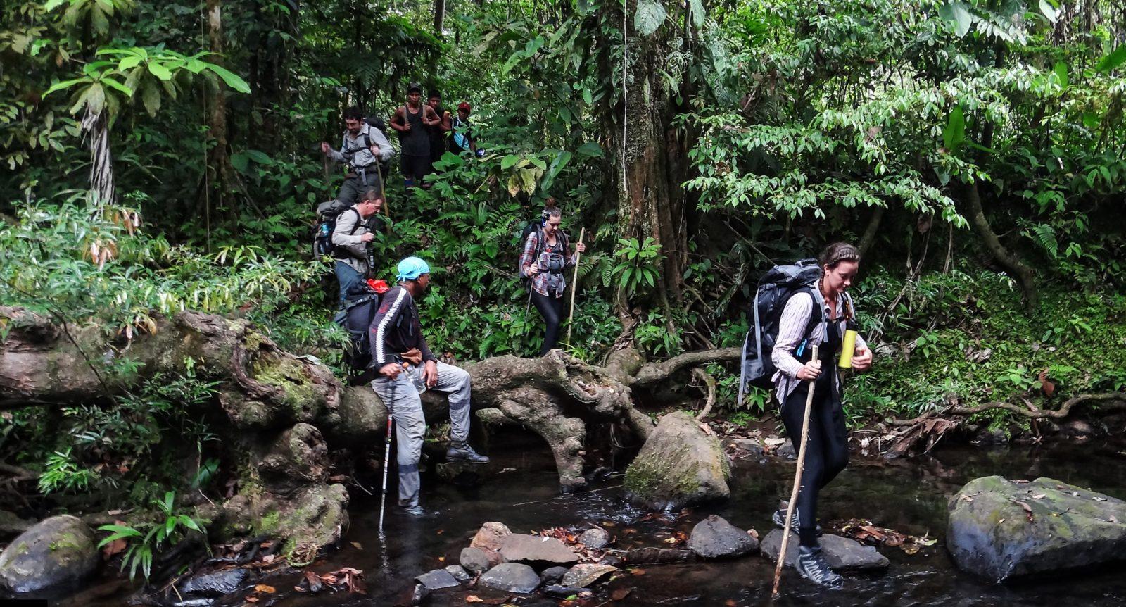 Qualify as a jungle guide | panama | secret compass.