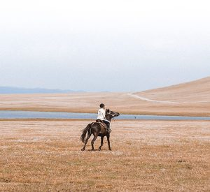 kyrgyzstan-horses