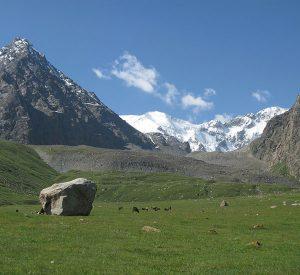kyrgyzstan-meadows
