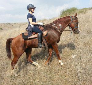 horse-riding-holiday