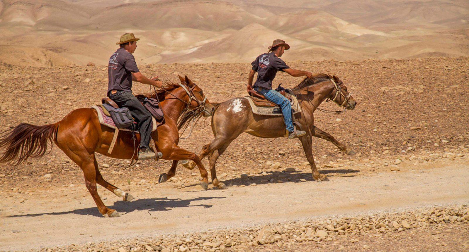 israel-adventure