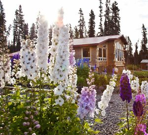 luxury-lodge-alaska