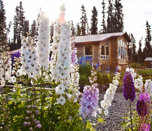 luxury-lodge-alaska