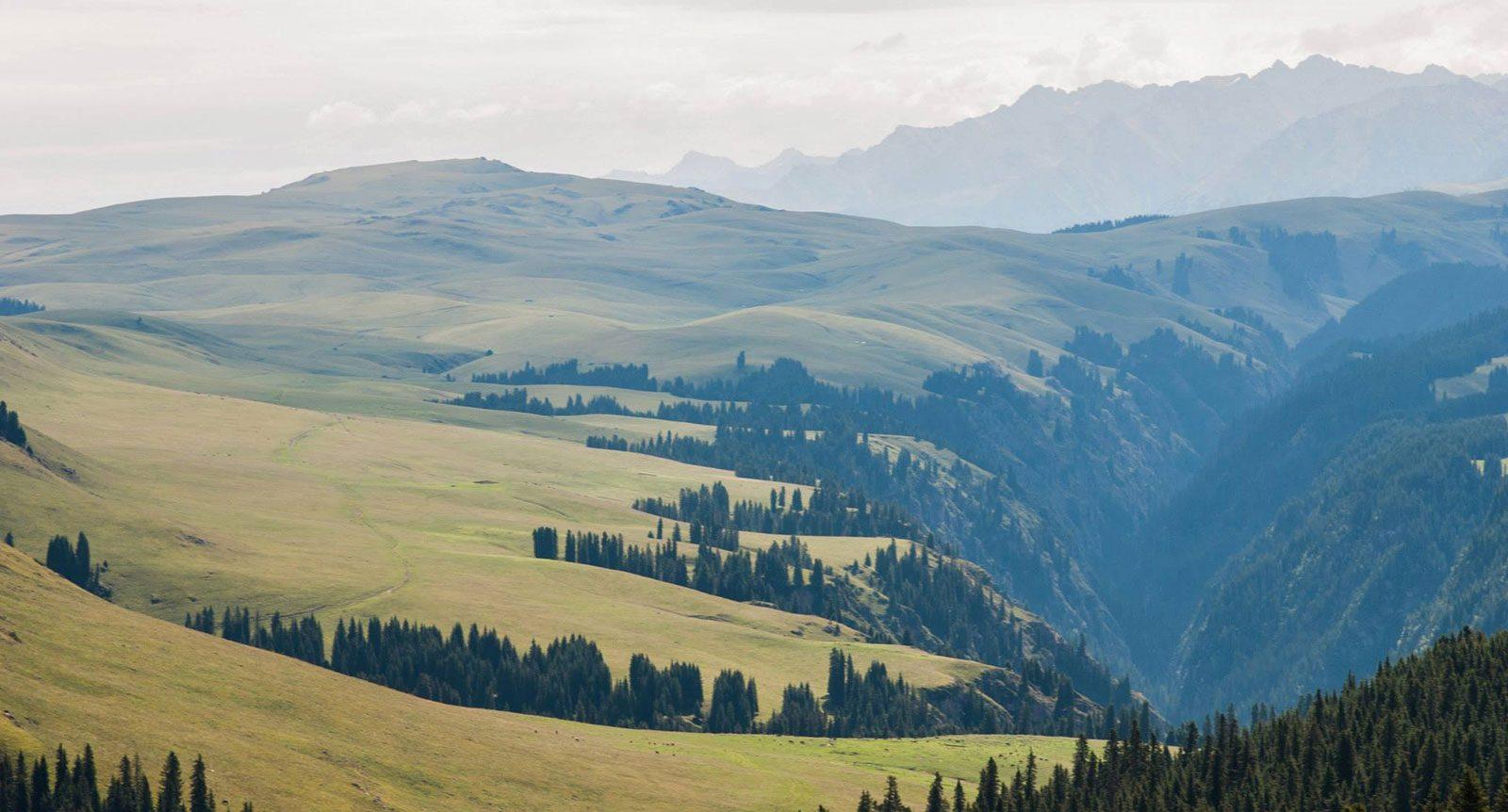 mongolia-national-park