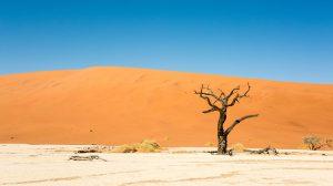 naimibia-souvlessi-desert