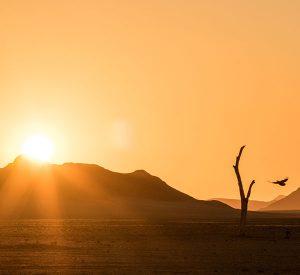 namib-desert-sunset
