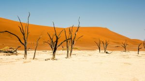 namibia-desert-bespoke-adventure