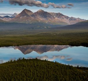 trekking-in-alaska