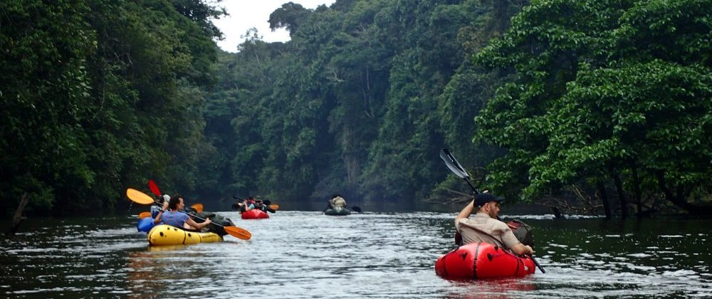Jungle and river exploration in the Ivindo National Park Gabon