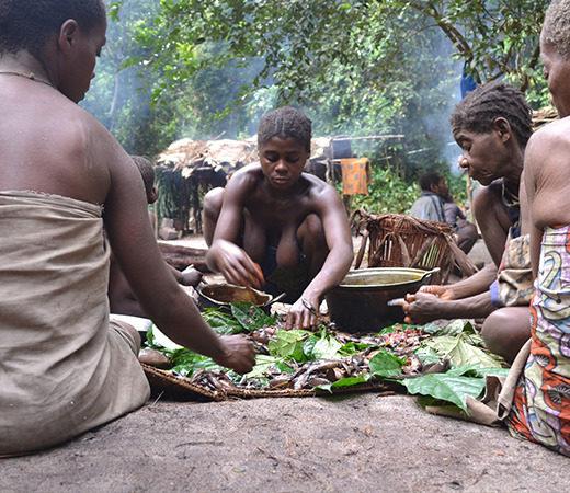 Congo Pygmies