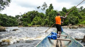 Unchartered rivers in Gabon