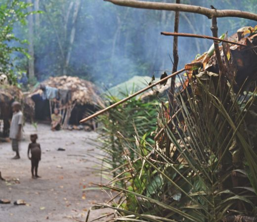 congo-jungle-community