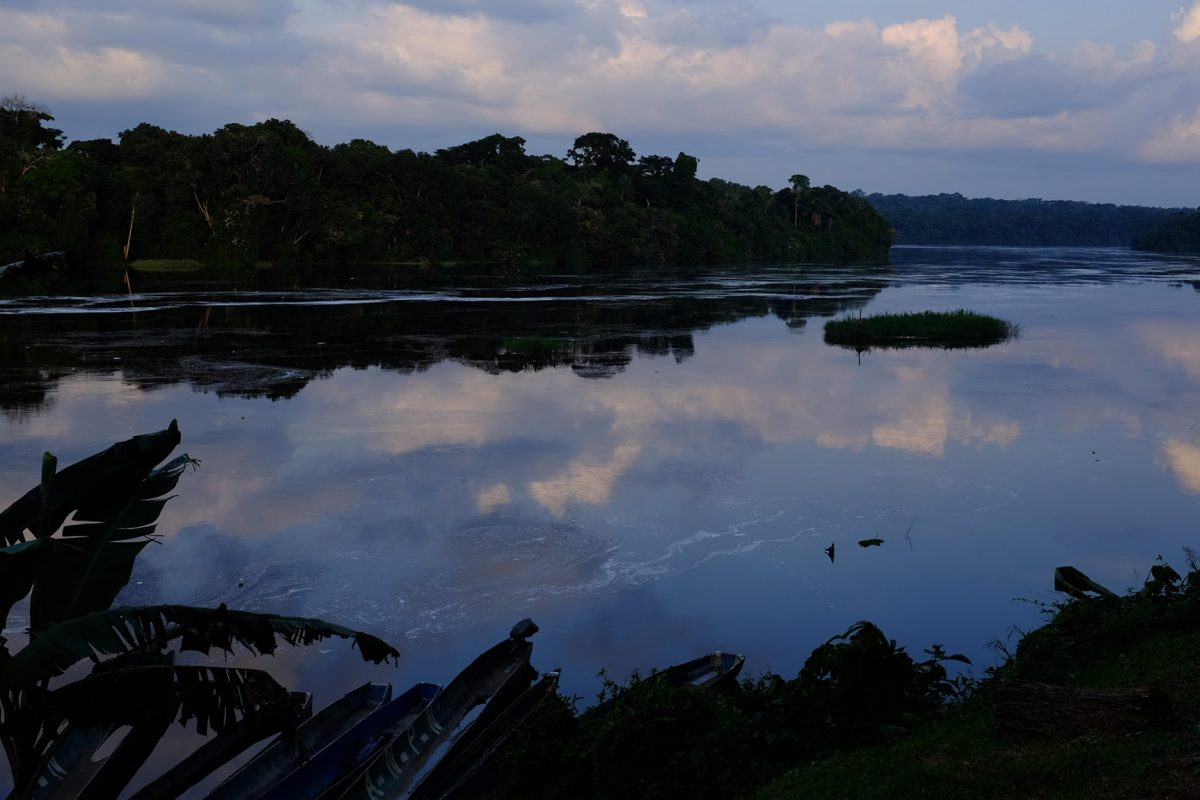 Evening serenity on the Ivindo River © Paul Taylor