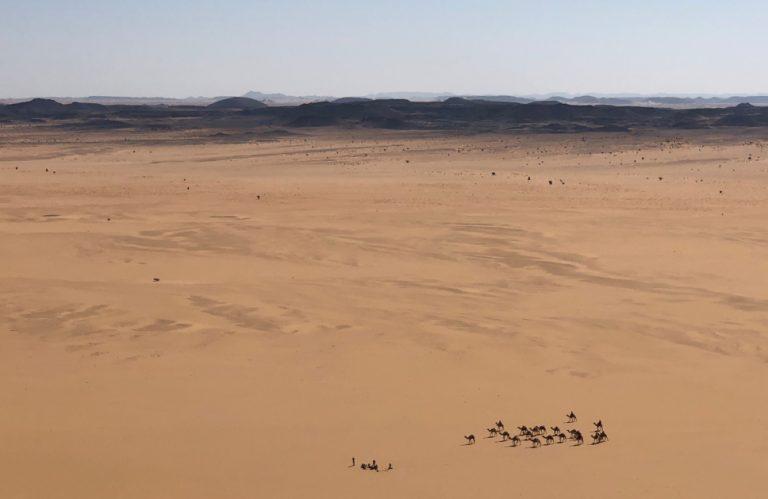 Camels crossing the Bayuda