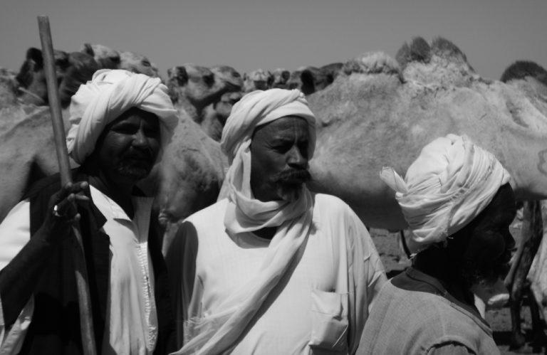 Camel herders in the Bayuda