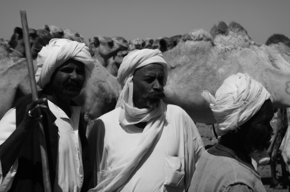 Camel herders in the Bayuda
