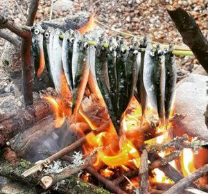 bushcraft-camp-training