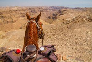 adventure-in-israel